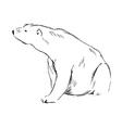 Hand sketch sitting polar bear vector image vector image