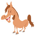 horse cartoon farm animal character vector image vector image