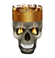 in the crown of the skull with signs the zodiac vector image