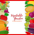 Vegetable set background for voucher