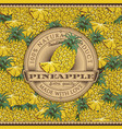 vintage pineapple label on seamless pattern vector image