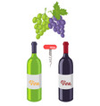 wine bottles and grapes set vector image