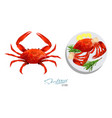 crab isolated on white background meat crab with vector image