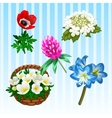 Five different flower types single and bouquet vector image vector image