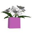 flowers in pink pot on white background vector image vector image