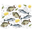 fresh fish pattern realistic water splash vector image
