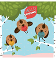 Greeting card with birds and trees vector image