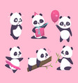 panda bear cute funny animal character in forest vector image vector image