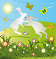 rabbits are jumping on the meadow in the morning vector image
