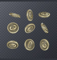 set of icons coins on transparent background euro vector image