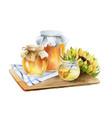 watercolor composition jars honey vector image