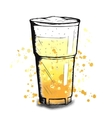 colorful sketch of beer cup vector image