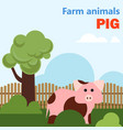farm animal pig vector image vector image