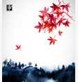 forest trees in fog and red japanese maple hand vector image vector image