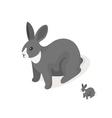 Isometric 3d of grey rabbit vector image vector image