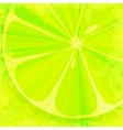 Lime grunge background vector image vector image