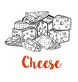set of cheese cuts isolated on white background vector image