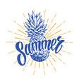 summer vintage emblem vector image