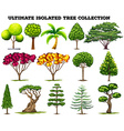 Ultimate isolated tree collection set vector image vector image