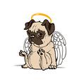 Pug Puppy Angel vector image