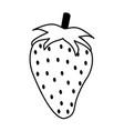 juicy sweet fresh frui vector image