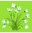 First spring flowers snowdrops vector image vector image