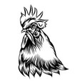rooster single head with black outline vector image