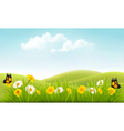 Summer nature background with grass and flowers vector image