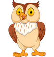 cartoon funny owl isolated on white background vector image vector image