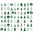 coniferous and deciduous trees icons on white vector image