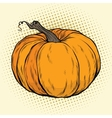ripe pumpkin thanksgiving or halloween vector image
