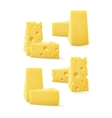 Set of Triangular Pieces Various Kind Swiss Cheese vector image vector image