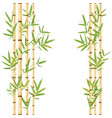 stalks of bamboo vector image vector image