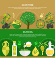 olive oil horizontal banners vector image vector image