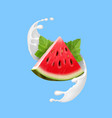 watermelon in yogurt or milk vector image vector image