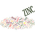 zinc text background word cloud concept vector image vector image