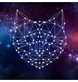 abstract polygonal tirangle animal cat
