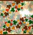 autumn background of maple leaves vector image vector image