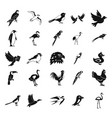 birds icon set simple style vector image