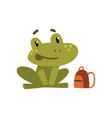 cute little frog funny amphibian animal cartoon vector image vector image