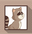cute raccoon frame picture vector image