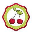 emblem sticker cherry fruit icon stock vector image vector image