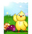 Little chicken and easter eggs vector image vector image