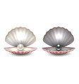 realistic 3d beautiful natural opened pearl vector image vector image