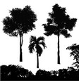 set of tree silhouette vector image