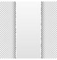 torn paper banner on transparent background vector image
