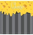 Cheese brochure on background made of vector image vector image