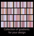 collection of pink gradients rose gold gradient vector image vector image