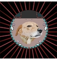 Dog in a circle vector image