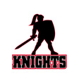 Knight with sword and shield vector image vector image